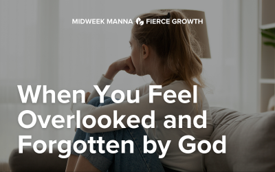 When You Feel Overlooked and Forgotten By God