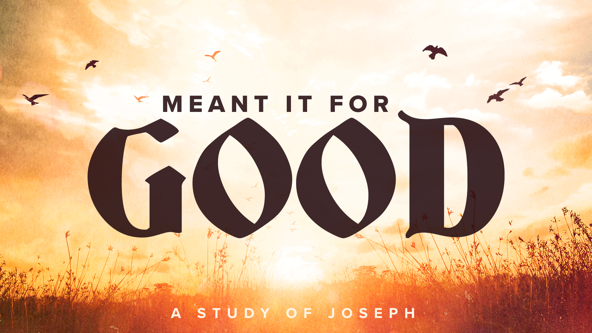 Meant It For Good [3]: The Path To Success