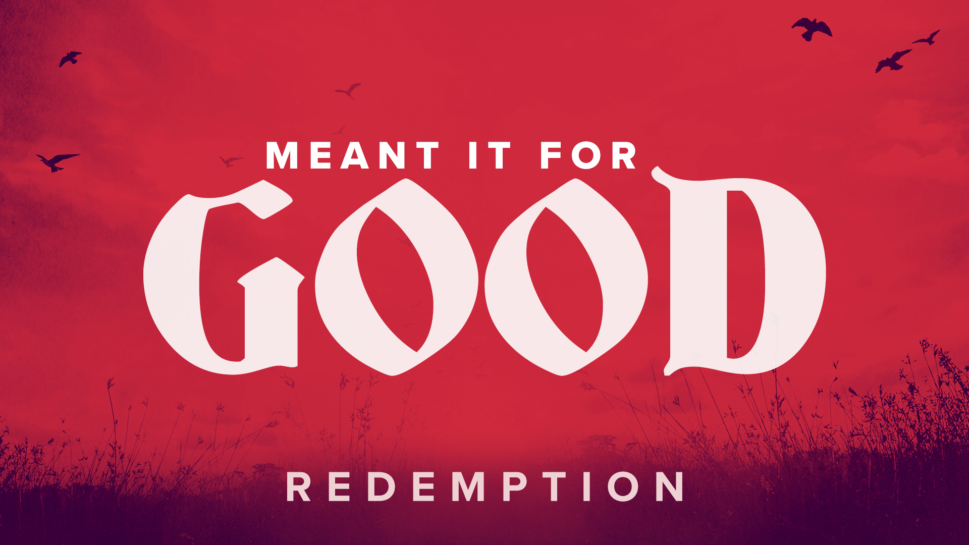 Meant It For Good [7] — Redemption | Passing Tests Pays Off
